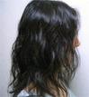 20090529.jpg